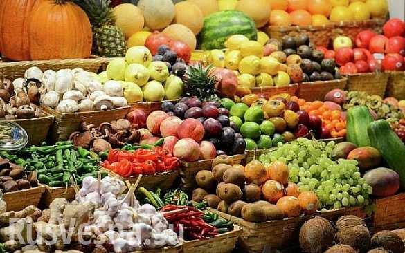 РФ закроет импорт продуктов из стран, поддержавших санкции
