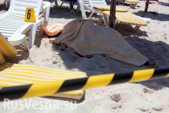 Кровавая пятница — кто стоит за терактами в Тунисе и Франции (ФОТО)