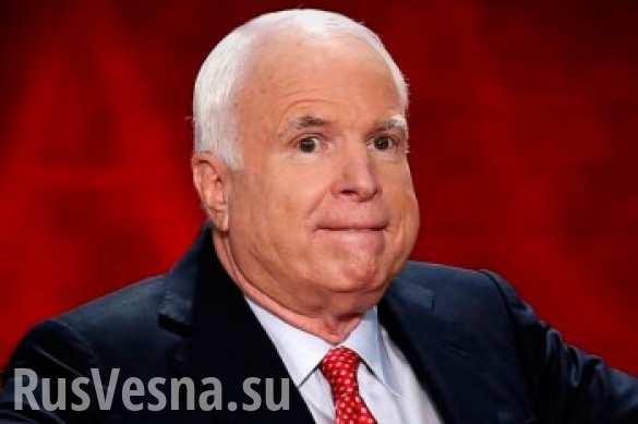 Маккейн и его украинские друзья выяснили: российская стратегия зашифрована в компьютерной игре