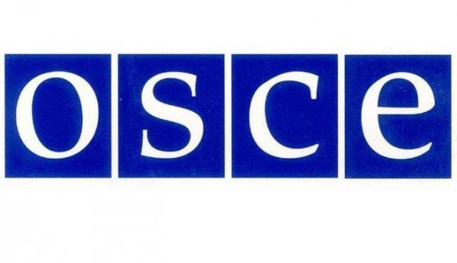 Спецпредставитель ОБСЕ посетит Приднестровье 7 июля