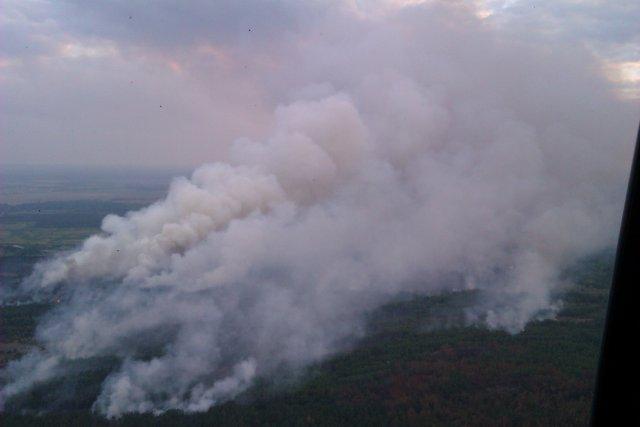 Говый пожар в Чернобыльской зоне отчуждения