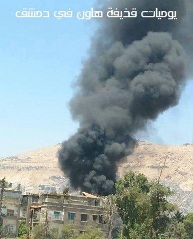 Damask 7