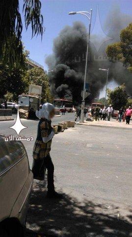 Damask 5