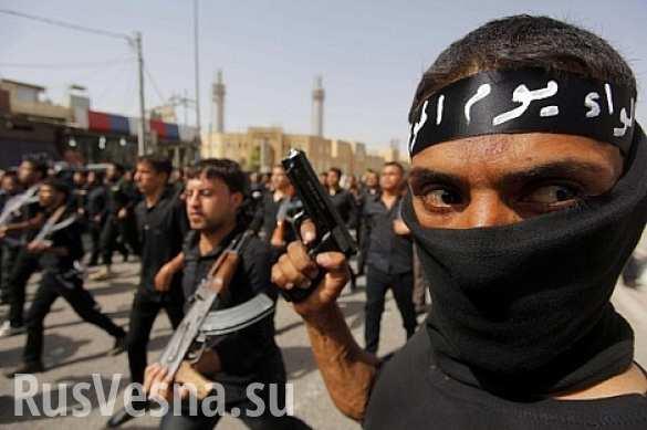 Вооружены до зубов: в Amnesty International рассказали, откуда у боевиков ИГИЛ появилось оружие (ФОТО)