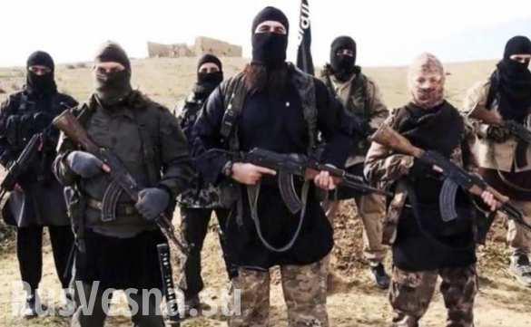 ИГИЛ с «человеческим лицом»: Запад собирается признать халифат партнером в сирийском урегулировании?