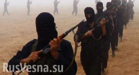 Как исламские пророчества о конце света отразятся на стратегии США