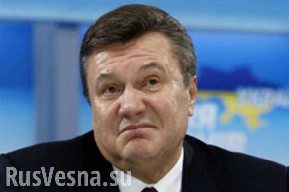 «Витя, где ты был?» — о возвращении Януковича в политику