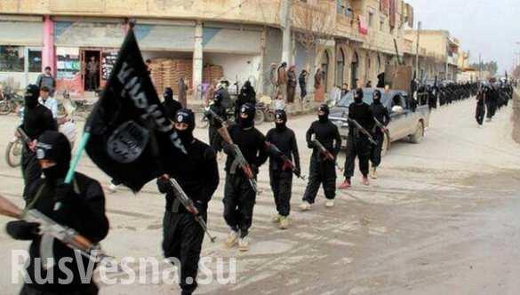 ИГИЛ располагает оборудованием для печати сирийских паспортов