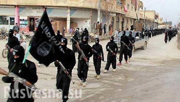Вербовщики ИГИЛ в Нидерландах приговорены к тюремным срокам