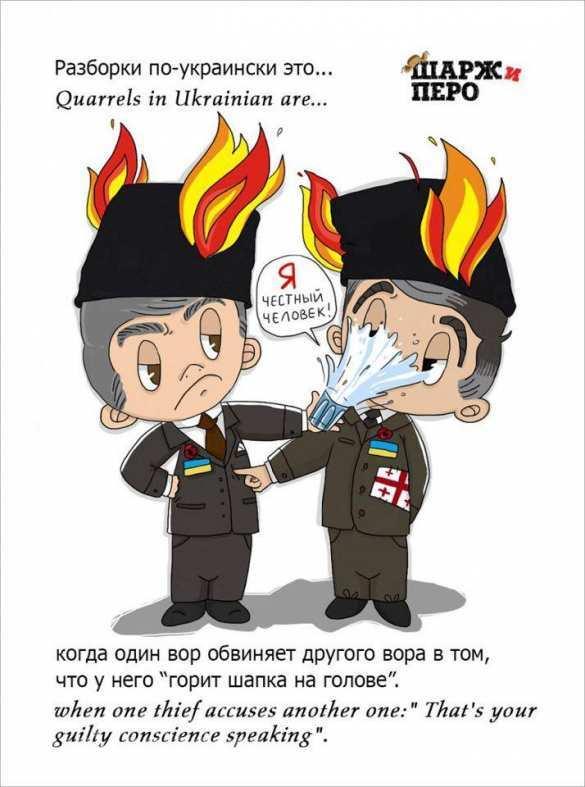 Это наша страна, и мы ее очистим от воров: Саакашвили прокомментировал видео конфликта с Аваковым (ФОТО) | Русская весна