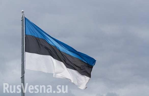 Эстонские военные заявляют, что самолет ВКС РФ нарушил границу страны