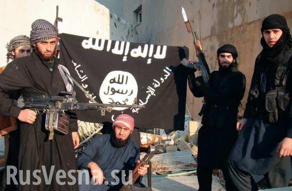 ИГИЛ заработали 500 миллионов долларов на торговле нефтью, — Минфин США