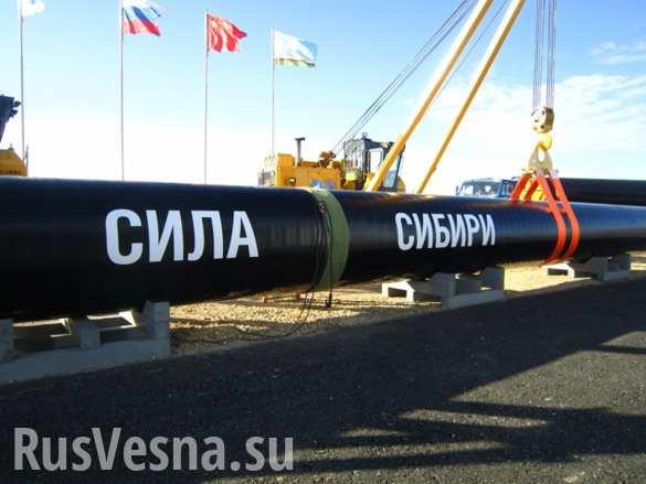 Китай подтвердил план по прокладке одной линии газопровода «Сила Сибири-2»