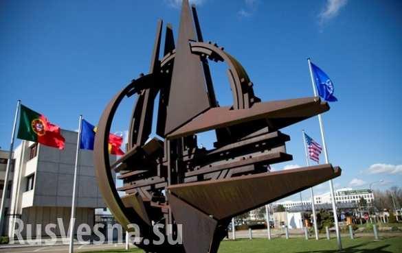 НАТО «ввело» российские войска на Донбасс