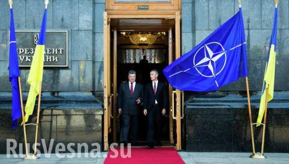 Украина и НАТО подписали дорожную карту по оборонному сотрудничеству