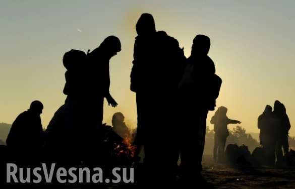 В Голландии арестованы участники протестов против приема беженцев
