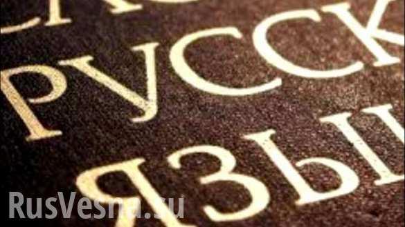 Донбасс: защищать язык с оружием в руках, — мнение