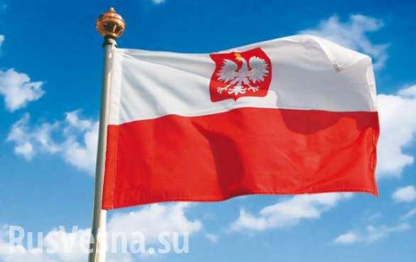Поляки протестуют против размещения ПРО США