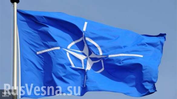 В Госдуме считают, что действия НАТО похожи на подготовку к блицкригу