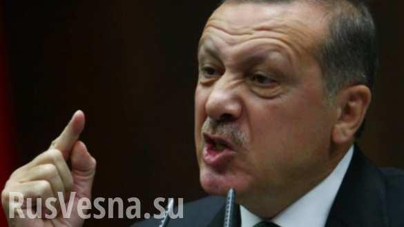 Запад больше волнуют геи и животные, чем сирийцы, — Эрдоган