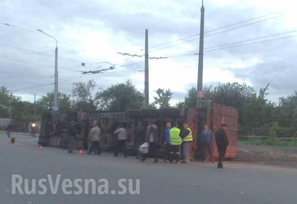 На Украине пьяный водитель фуры «засеял» обочину 30 тоннами семян подсолнуха (ФОТО, ВИДЕО) | Русская весна