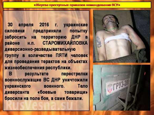 Никто не уйдет от возмездия: ополчением уничтожен один из участников убийства мирных жителей в Еленовке | Русская весна