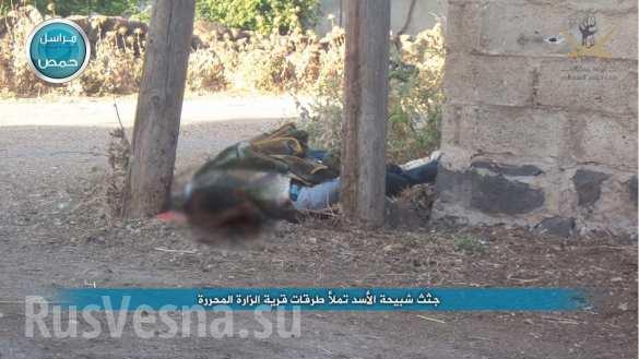 Резня в захваченной террористами сирийской Заре глазами очевидцев (ФОТО, ВИДЕО 18 ) | Русская весна