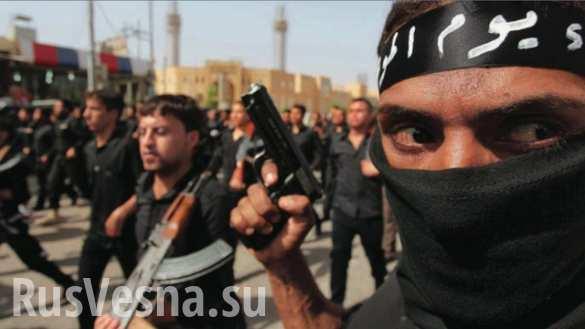 За ИГИЛ в Сирии воюют сотни косовских албанцев, — МИД Сербии