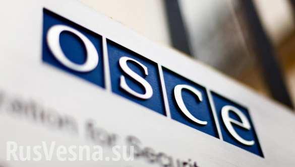 Ситуация на Донбассе принимает черты, характерные для «замороженных конфликтов», — ОБСЕ