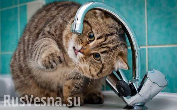 В украинском Ровно сегодня прекращается подача горячей воды населению