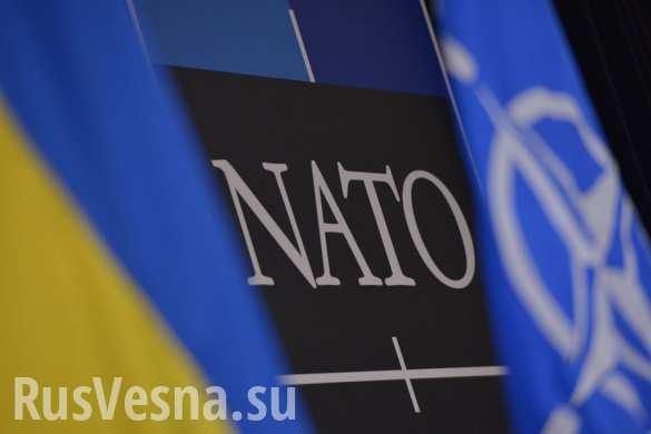 Зрада: В НАТО не видят необходимости в поставках Киеву летального вооружения?