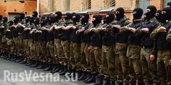 Национализм киевской «улицы» против национализма власти: Кому грозит «Азов»