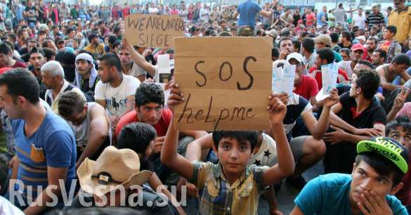 Турция отправляет в ЕС в первую очередь необразованных и больных беженцев, — Der Spiegel