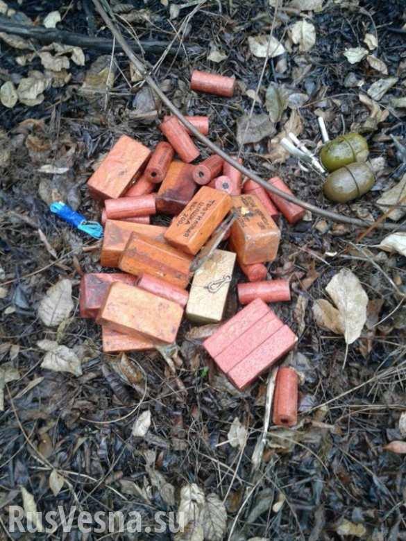 Семь бандитский закладок с оружием и боеприпасами уничтожено в Ингушетии