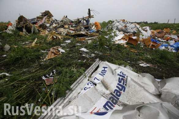 Нет никаких юридических доказательств вины России в крушении MH17, — сенатор